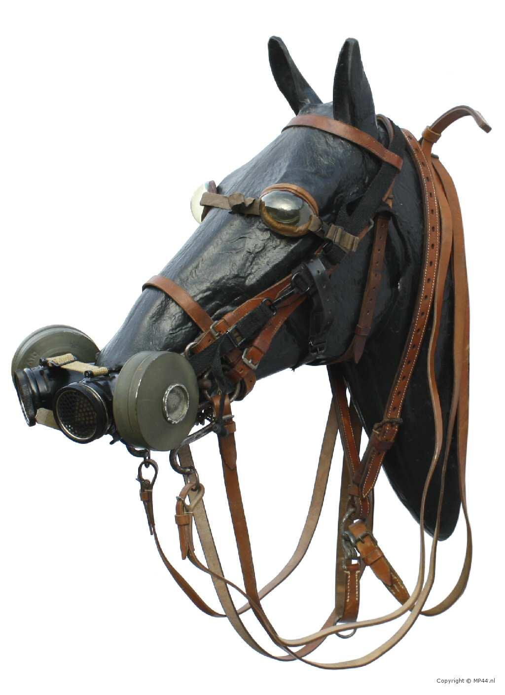 pferdegasmasken horse gas masks wehrmachtawardscom